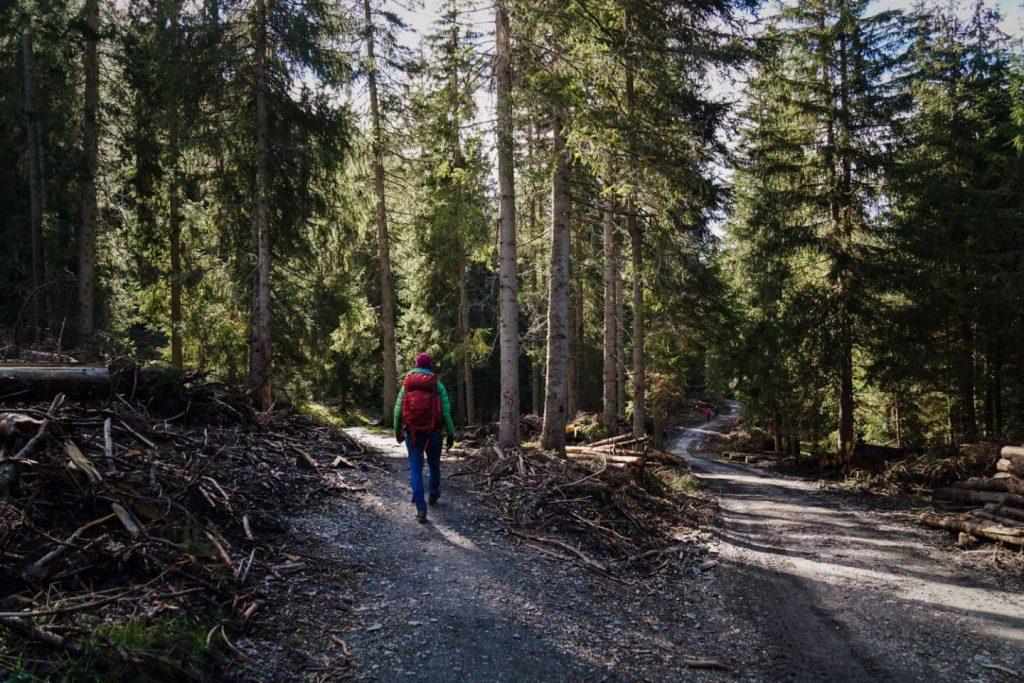 Trail 36, Val di Funes, Italian Dolomites