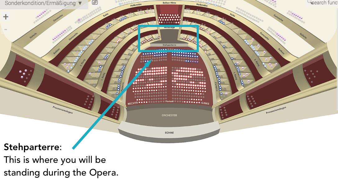 Where to Stand in the Staatsoper, Vienna   Moon & Honey Travel