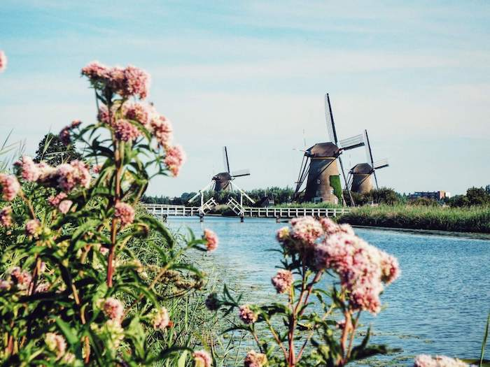 The Netherlands Travel Guide | Moon & Honey Travel