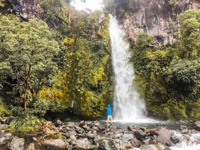 Dawson Falls, New Zealand