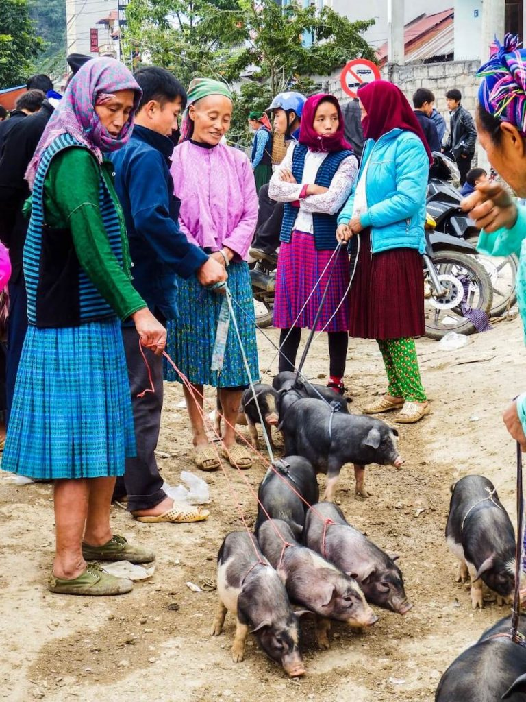 Meo Vac Sunday Market, Ha Giang, Vietnam Travel Guide