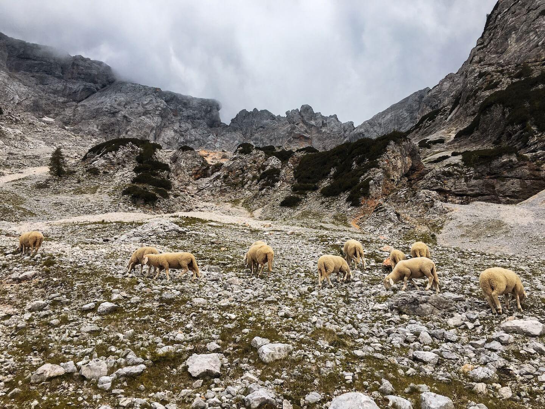 Češka koča, Kamnik-Savinja, Slovenian Alps