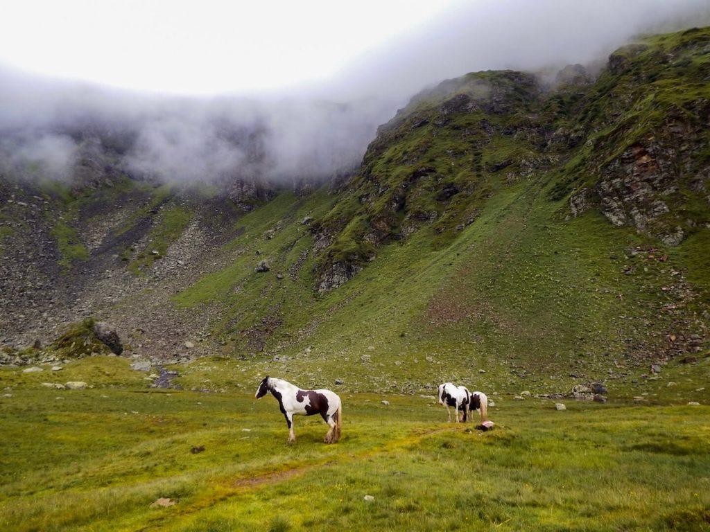 Keinprechtshütte, Austrian Alps, Schladminger Tauern | Moon & Honey Travel