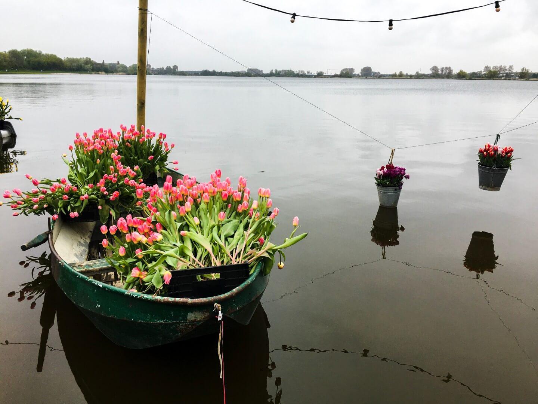 Biking Around Lisse, the Netherlands