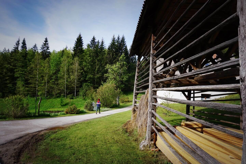 Traditional hayrack barn, Koprivnik v Bohinju, Pokljuka Plateau Slovenia