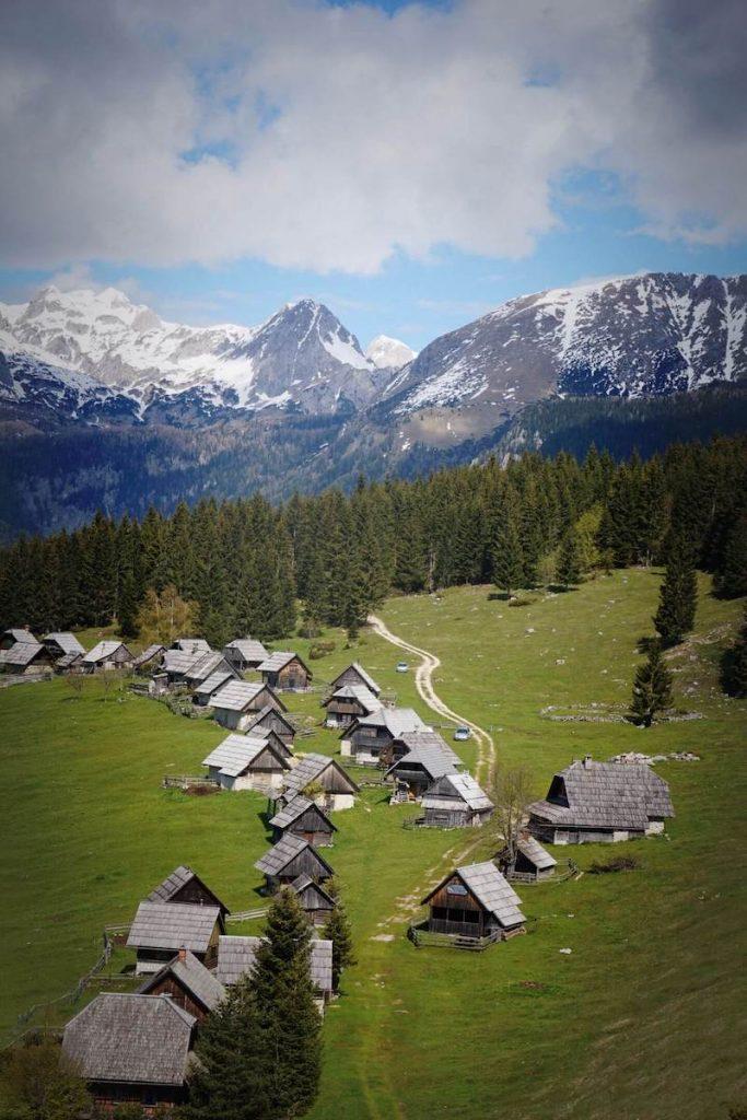 Planina Zajamniki, Pokljuka Plateau - Slovenia Travel Guide