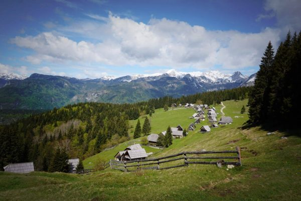 A quick guide to Pokljuka Plateau, Slovenia