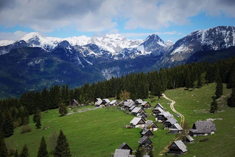 Planina Zajamniki, Pokljuka Plateau, Slovenia Hidden Gems