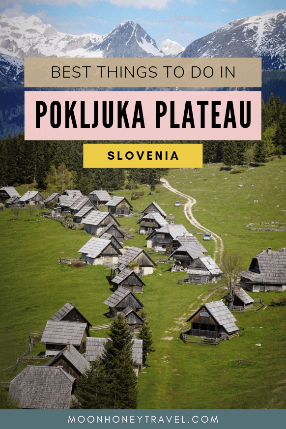 Best things to do in Pokljuka Plateau, Slovenia