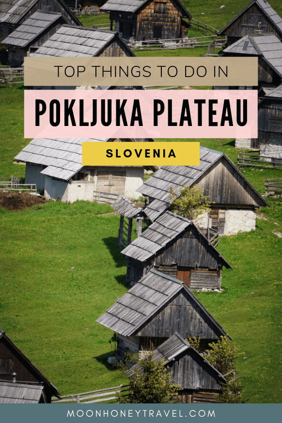 Top Things to Do in Pokljuka Plateau, Slovenia
