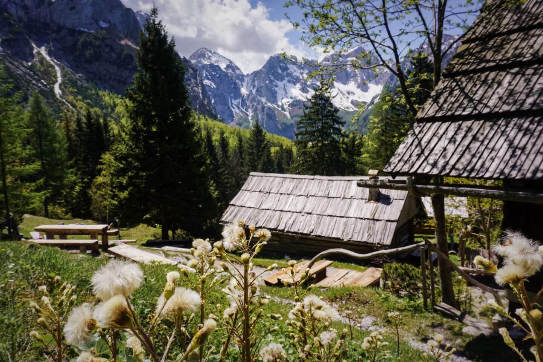 Koča na Klemenči jami pod Ojstrico, Kamnik-Savinja Alps - Logar Valley Day Hike, Slovenia