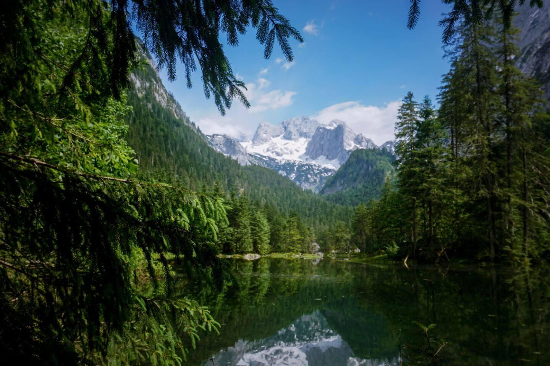 Gosaulacke, Gosauseen mit Dachsteingebirge im Hintergrund
