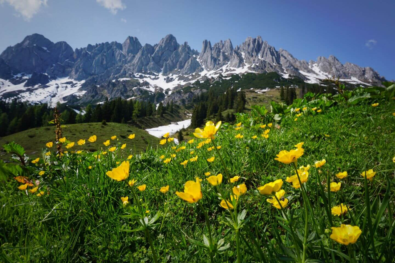 Salzburger Almenweg Stage 2 - Best Day Hikes in Austria