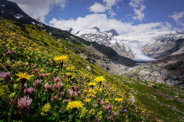Innergschlöss Glacier Trail, East Tyrol, Austria