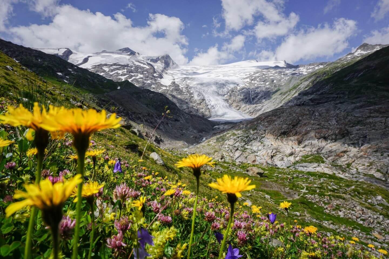 Venediger Höhenweg Route Options, Hohe Tauern, Osttirol, Austria