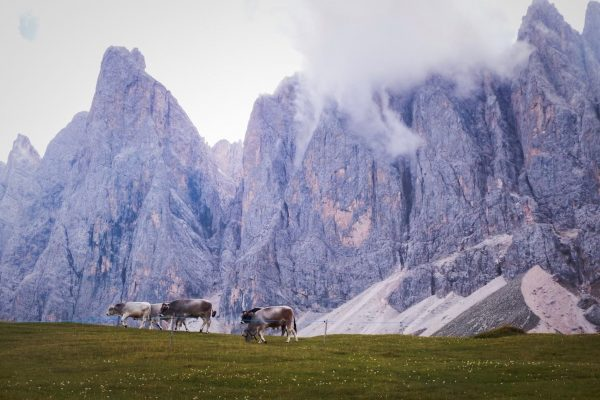Best Dolomites Hikes - Adolf Munkel Trail