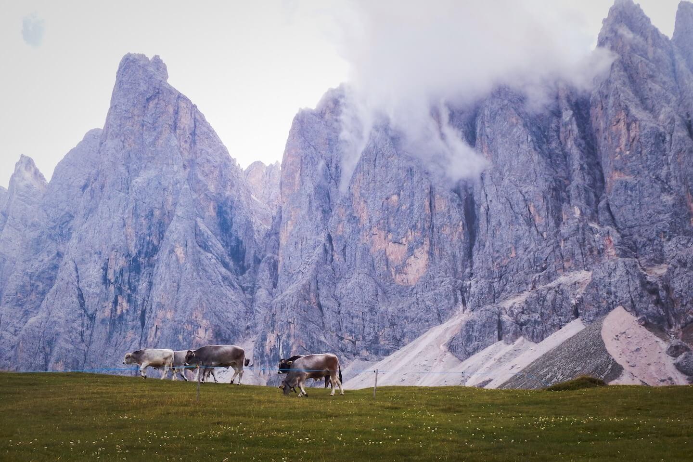 Val di Funes - Dolomites Road Trip Itinerary