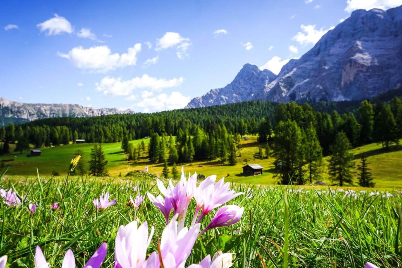 Armentara Plateau, Badia, Dolomites, Italy