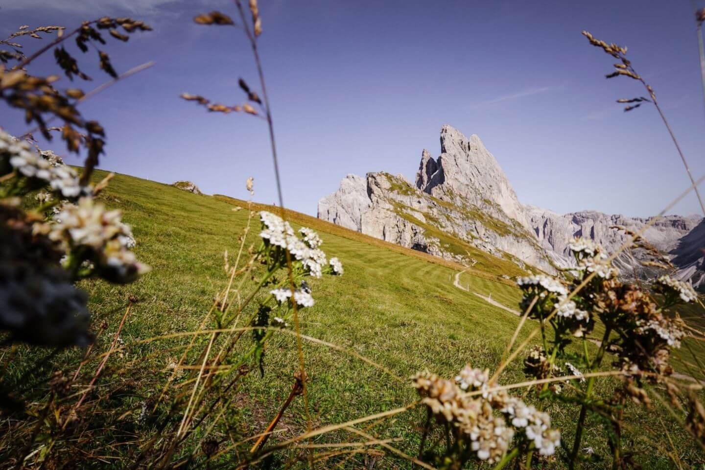 Seceda Ridgeline Hike - Best Hikes in Val Gardena, Dolomites, Italy