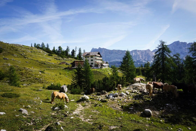 Rifugio Gardenacia Puez-Odle Day Hike, La Villa to Colf