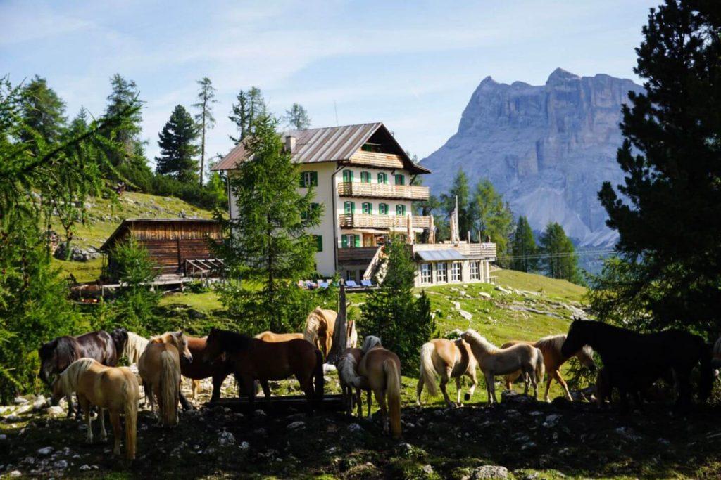 Rifugio Gardenacia Day Hike, La Villa to Colfosco, Italian Dolomites