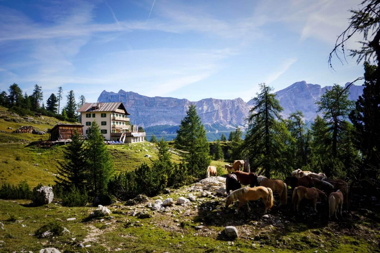 Rifugio Gardenacia, Rifugios Opening Times in September, Dolomites