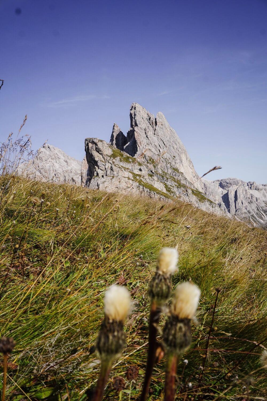 Resciesa to Seceda Hike from Ortisei, Val Gardena, Dolomites