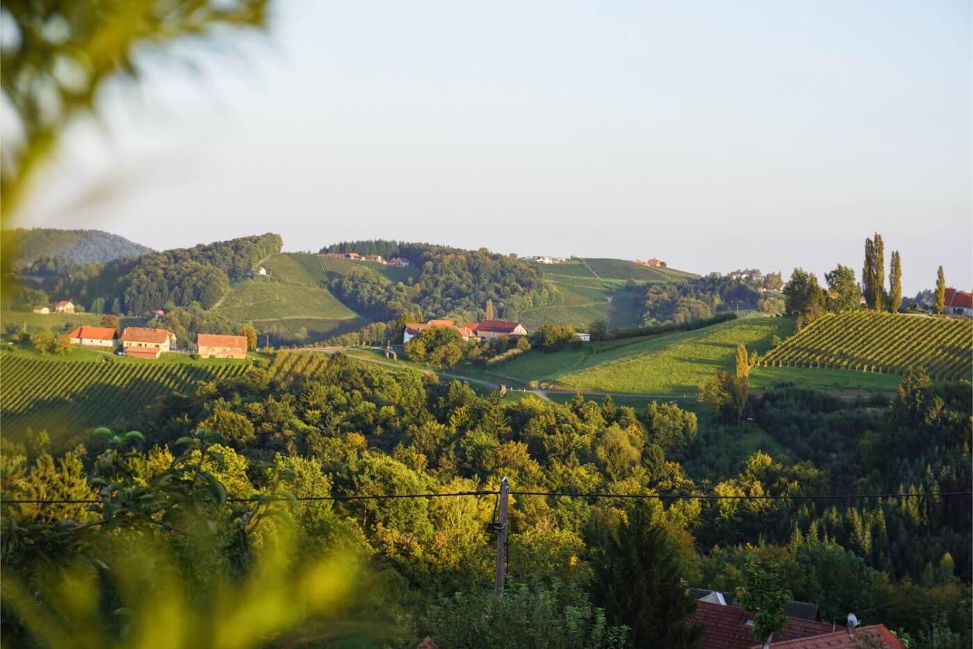 Rolling vineywards in South Styria, Austria