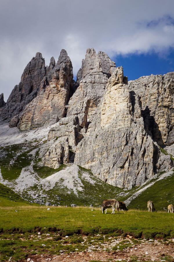 Becco di Mezzodì and Malga Prendera, Cortina d'Ampezzo, Dolomites