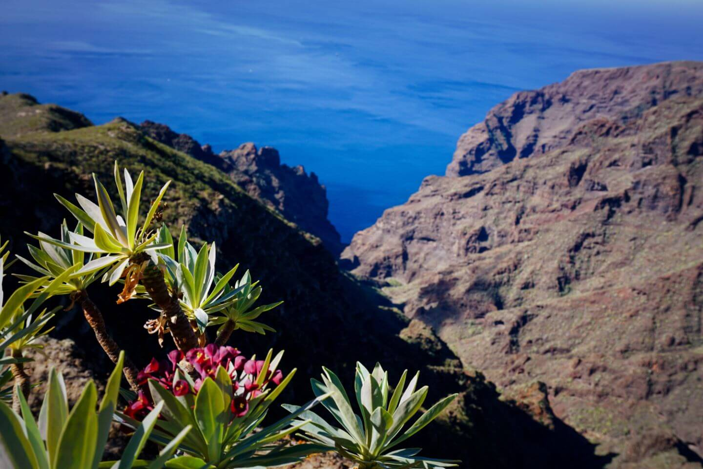 View of Barranco Seco, Los Gigantes Cliffs, Tenerife