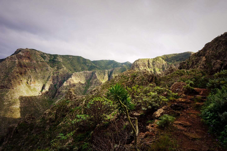 amino del Risco from Teno Alto to Punta de Teno, Tenerife