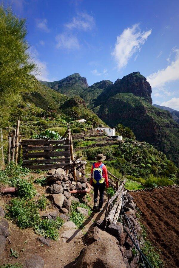 Teno Mountains Walk, Tenerife