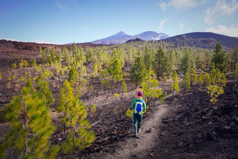 Montaña de la Botija Hike, Teide National Park, Tenerife