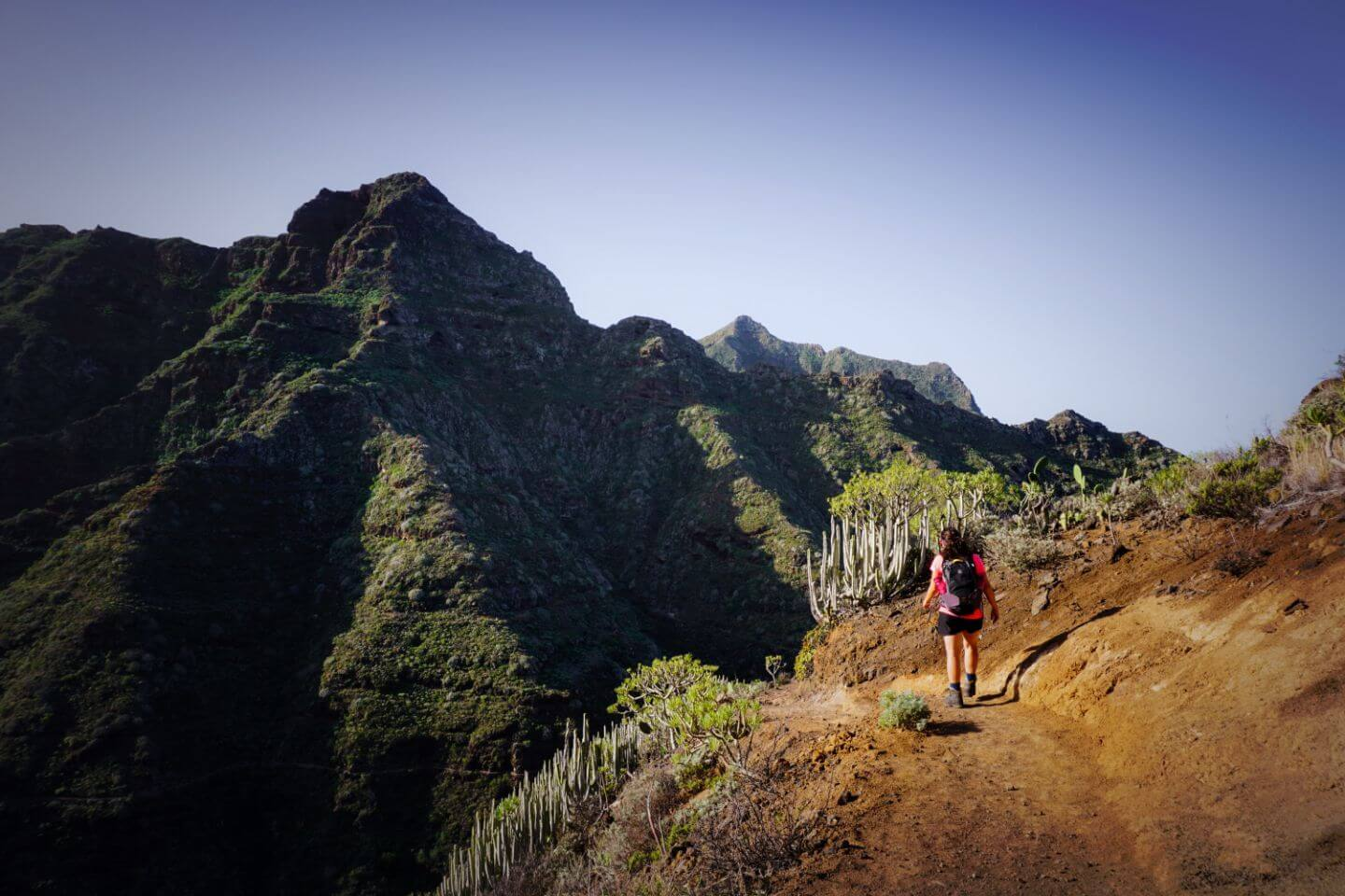 Punta del Hidalgo to Chinamada and Carboneras - Best Hikes in Tenerife Mountains