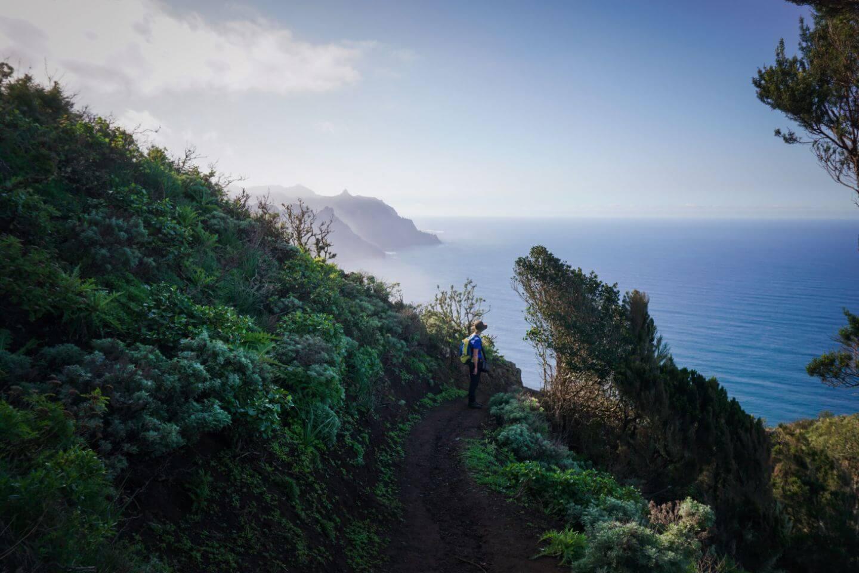Chamorga to Benijo Hike, Tenerife