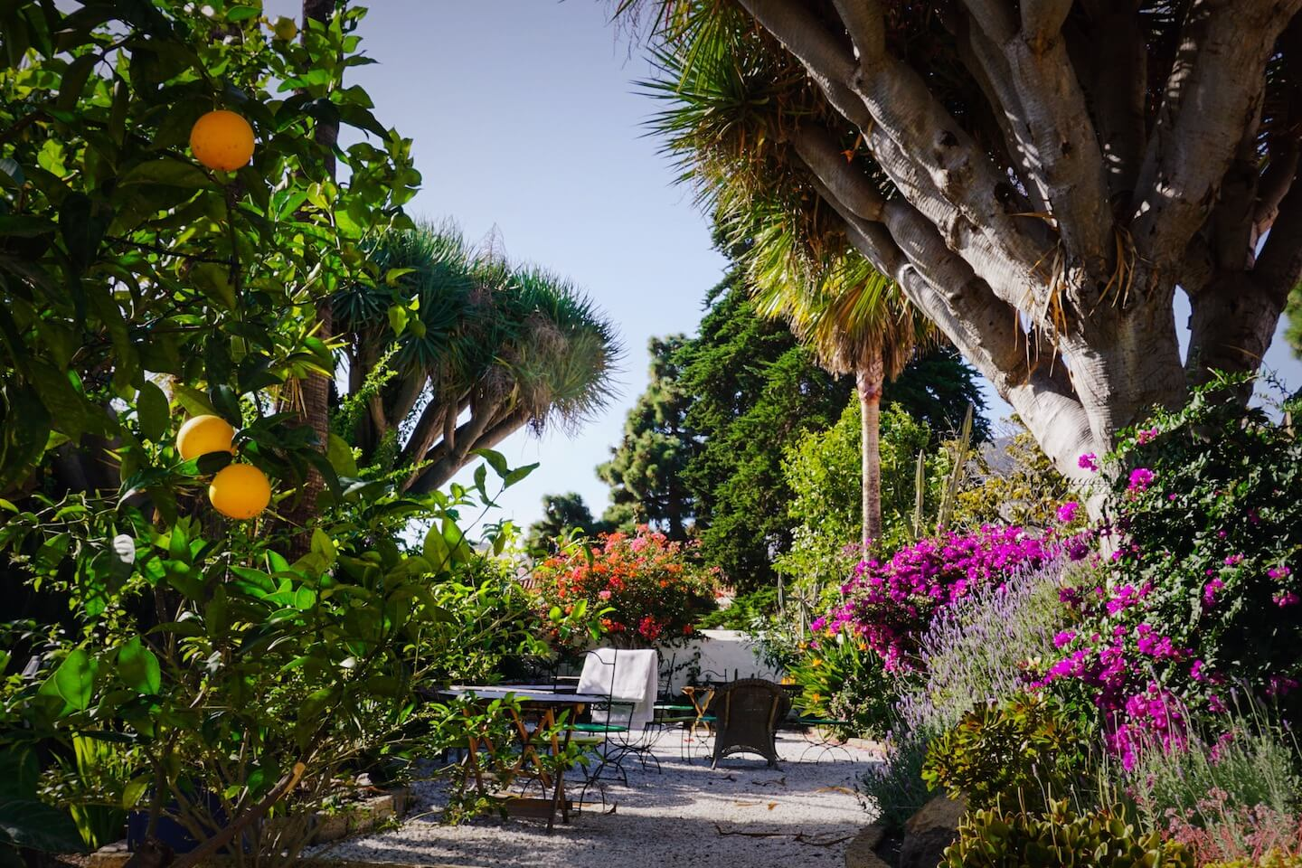 Where to Stay in Tenerife for Hiking - Casa Arona Rural
