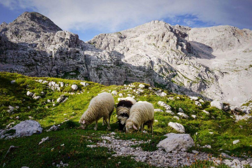Julian Alps, Slovenian Alps Hiking Trails
