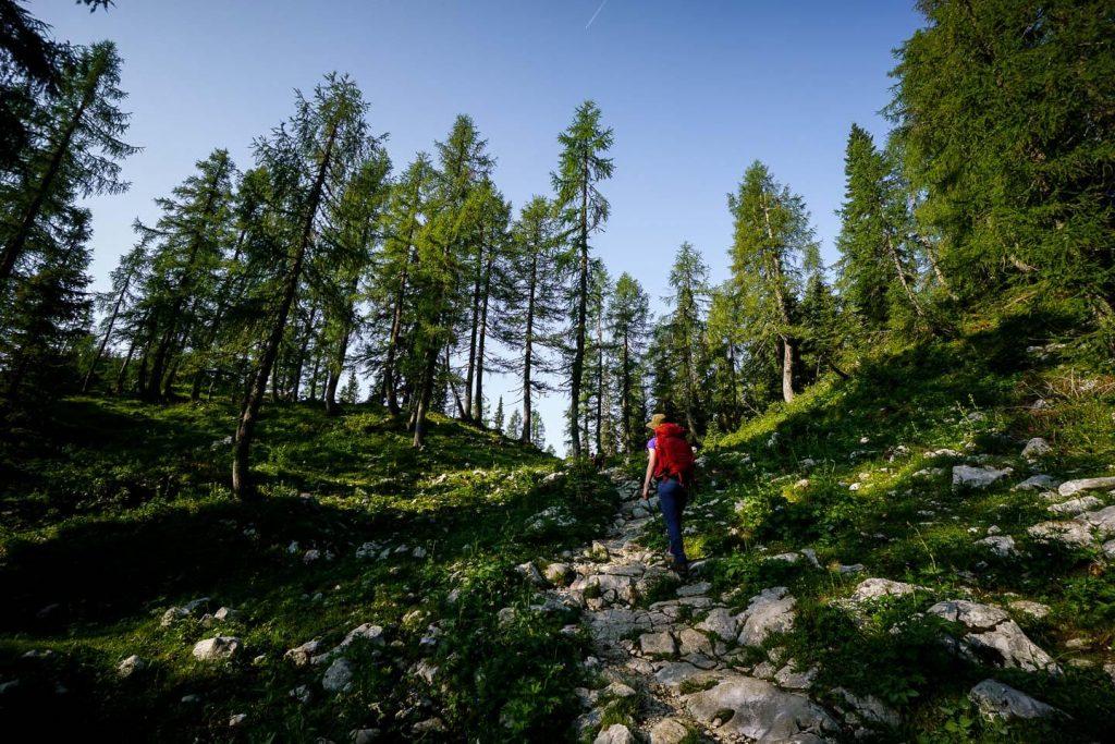 Planina Dedno Polje to Planina Ovčarija, Julian Alps, Slovenia