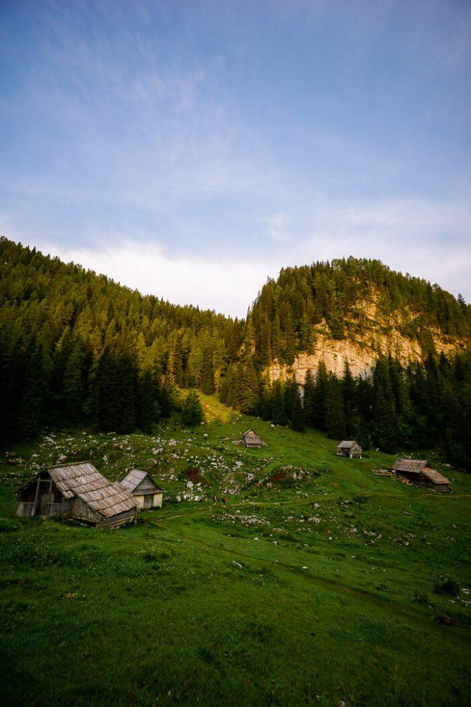 Planini Pri Jezeru, Bohinj Alpine Pasture, Slovenia