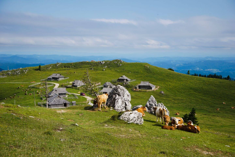 Mala Planina, Slovenia 5 Day Itinerary