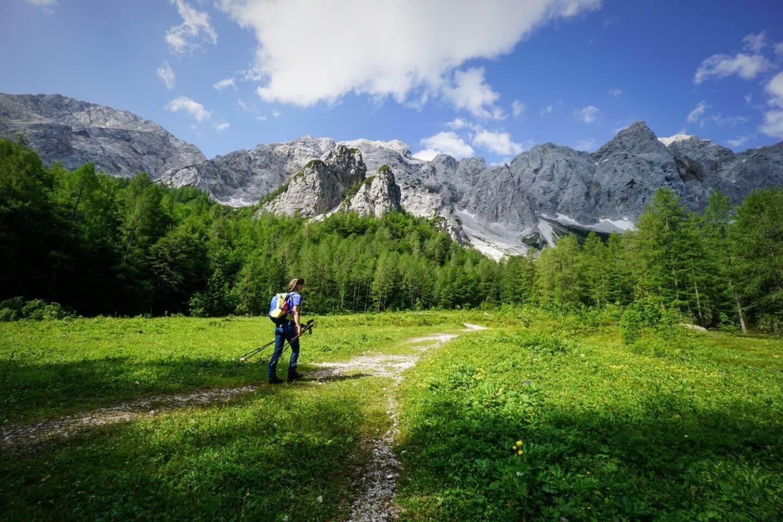 Okrešlj meadow, Kamnik-Savinja Alps, Slovenia