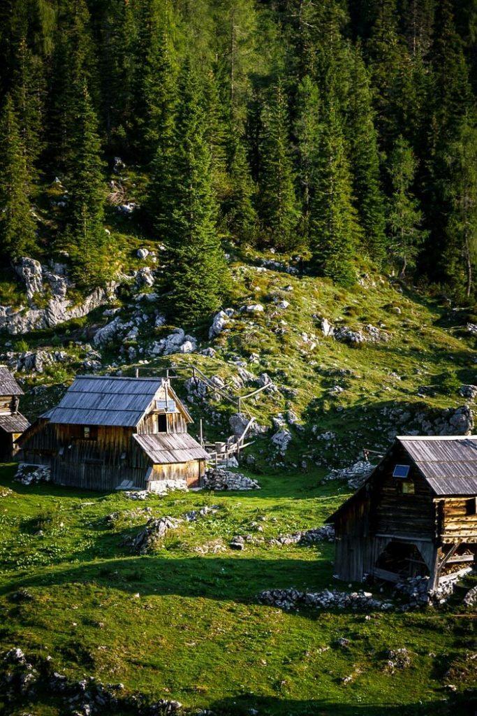 Dedno Polje Alpine Pasture, Slovenia
