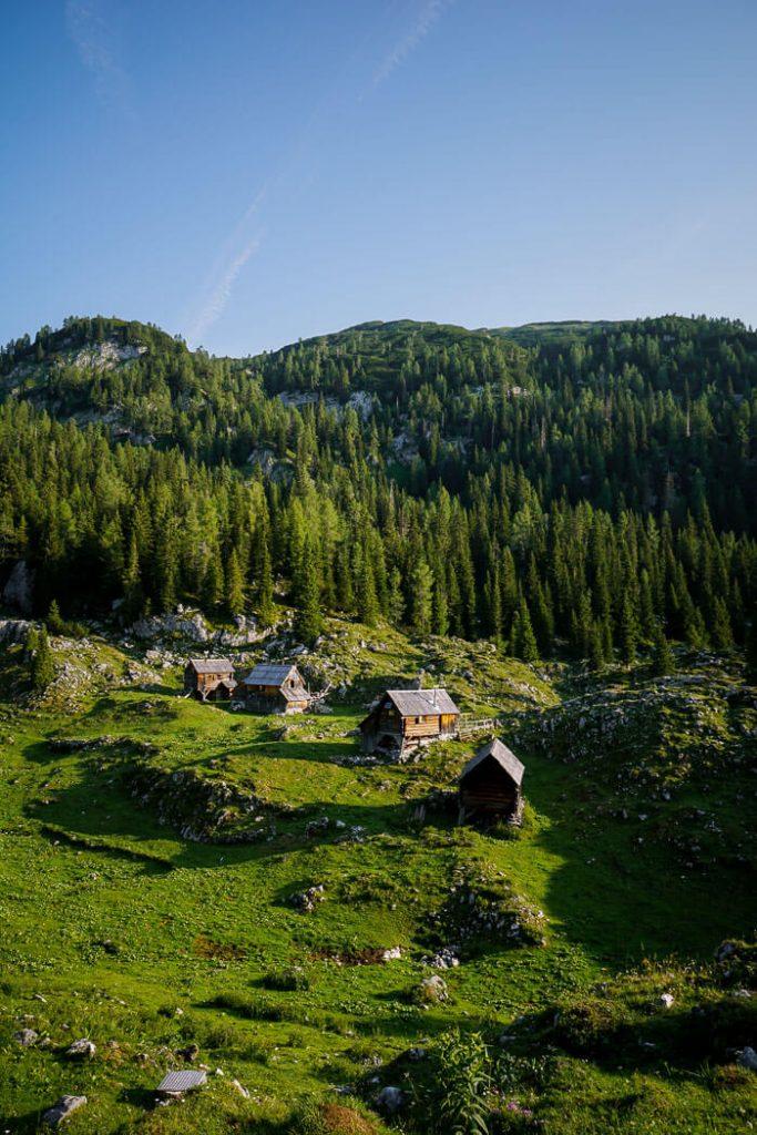 Dedno Polje Mountain Pasture, Julian Alps, Slovenia