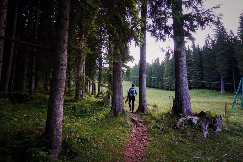 Rudno Polje to Viševnik Hiking Trail, Julian Alps, Slovenia