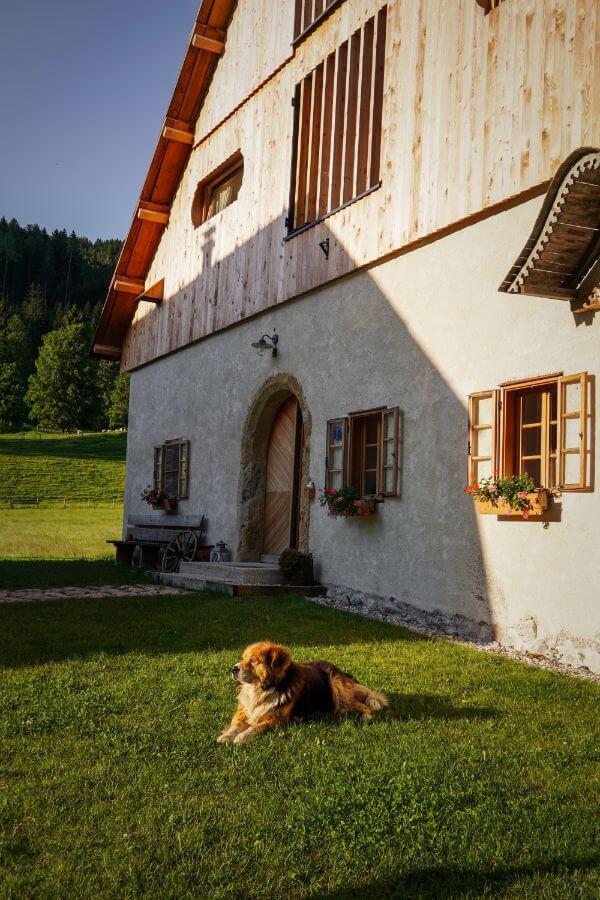 Tourist Farm Šenkova domačija