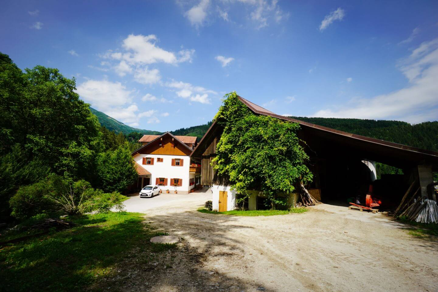 Tourist Farm Stoglej in Luče - Best Places to Stay in Slovenia