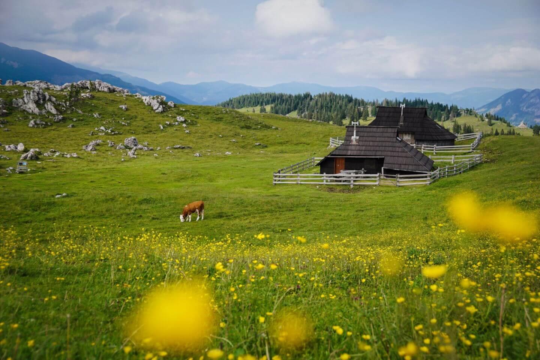 Velika Planina, 5 Day Slovenia Road Trip Itinerary