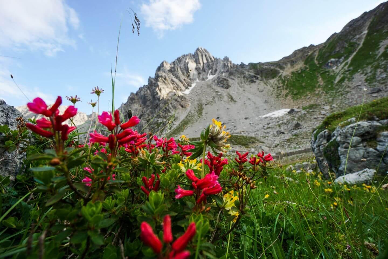 Parzinnspitze, Eagle Walk Lechtal Alps, Austria