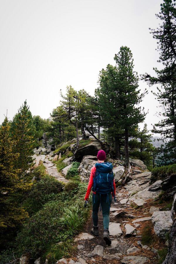 Stone Pine Trail, Easy Walk above the Inntal Valley, Tirol, Austria
