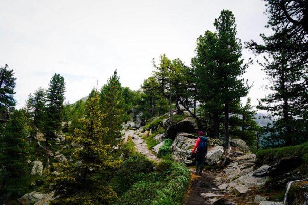 Stone Pine Trail (Zirbenweg), Easy hike above Innsbruck, Austria